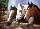 Glass Chopping Board Kevin Walsh Three of a Kind Horses Kitchen Worktop Saver