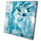 Animals Blue Butterfly Tranquil  SINGLE CANVAS WALL ART Picture Print VA