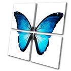 Animals Morpho Butterfly Blue MULTI CANVAS WALL ART Picture Print VA