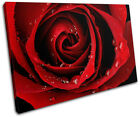 Roses Love Flowers Floral SINGLE CANVAS WALL ART Picture Print VA
