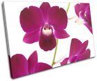 Orchids Flowers Floral SINGLE CANVAS WALL ART Picture Print VA