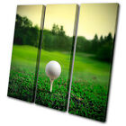 Sports Golf Ball on Tee TREBLE CANVAS WALL ART Picture Print VA