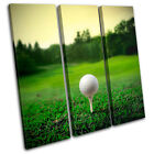Golf Ball on Tee Sports TREBLE CANVAS WALL ART Picture Print VA