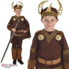 BOYS VIKING BOY WARRIOR BOOK WEEK FANCY DRESS COSTUME