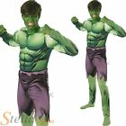 Mens Incredible Hulk Avengers Halloween Fancy Dress Costume Superhero Outfit
