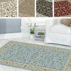 Million Point Classic Traditional Vintage Antique Style Soft Oblong Floor Rug