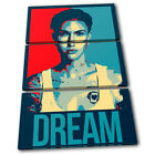 Ruby Rose Dream Abstract TREBLE CANVAS WALL ART Picture Print VA
