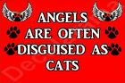 ANGELS ARE OFTEN DISGUISED AS CATS Fridge Magnet Ideal Gift/Present kitten