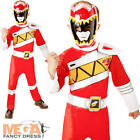 Deluxe Red Dino Charge Power Ranger Boys Fancy Dress Superhero Childs Costume