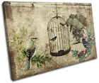 Garden Vintage Bird  Floral SINGLE CANVAS WALL ART Picture Print