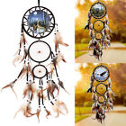 Dream Catcher With Feather Wall Hanging Decoration Ornament NEW Bear/Eagle/Wolf