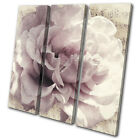 Vintage Shabby chic Flower Floral TREBLE CANVAS WALL ART Picture Print