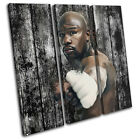 Floyd Mayweather Boxing Grunge Vintage TREBLE CANVAS WALL ART Picture Print