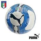 Official Puma Italia Team Italy Fan EvoPower 5.3 Football HS Training Ball