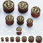 Natural Sono Wood Saddle Flared Plugs Tunnel Lion Head Stretchers Expanders Kit
