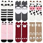 Bundle Monster 6 Pair Baby Toddler Size 1-3 Years Knee High Style Tube Socks Set