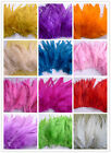 100/500Pcs Beautiful Mix color Choice Rooster Feathers 15-20cm/6-8inch For Craft
