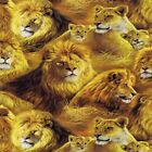 JUNGLE SAFARI LIONS LIONESS AFRICAN QUILT SEWING CRAFT FABRIC Free Oz Post