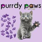 EXCLUSIVE COLOR * PURPLE HOLOGRAPHIC * 40 Soft Nail Caps Cat Claws * Purrdy Paws