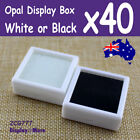 40X Opal Gemstone Storage Display Case-4x4cm | White or Black | AUSSIE Seller