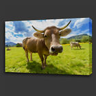 BROWN COWS FIELD OF GRASS PAINTING STYLE BOX CANVAS PRINT WALL ART PICTURE PHOTO