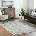 nuLOOM Contemporary Modern Transitional Floral Area Rug in Grey and Off White