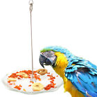 Stainless Steel Parrot Food Holder Fruits Fork Plate Stand Pets Birds Spear Tool