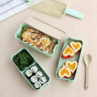 2/3Layer Microwave Bento Box Lunch Box Kid Picnic Camping Container Food Storage