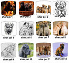 Shar Pei Dogs Designs Lampshades Ideal To Match Shar Pei Dogs Cushions & Dog Bed