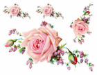 Внешний вид - Vintage Victorian Pink Cabbage Rose Large Furniture Size Waterslide Decal FL212