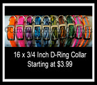 16x3/4 D-Ring Dog Collar with FREE NAME PLATE