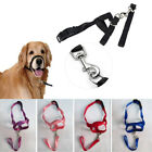 Dog Muzzle Strap Halti Stops Training Nose Reigns  Pulling Halter Head Collar UK