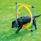 Top Dog Agility Hoop Kit Obstacle Course Training Equipment Tunnel exercise