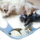 Pet Cat Hammock Bed Breathable Mesh Cat Bed Removable Hanging Soft Pets Swing