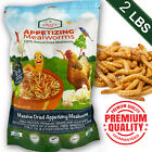 High-Protein Bulk Dried Mealworms For Birds Chicken Animals Non-GMO and Natural
