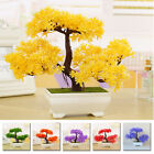 Decoration Potted Plant Accessories For Home Table Eco-friendly Artificial 1pc