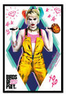 Birds Of Prey Harley Quinn Poster MAGNETIC NOTICE BOARD Inc Magnets | UK Seller