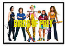 Birds Of Prey Group Poster MAGNETIC NOTICE BOARD Inc Magnets | UK Seller