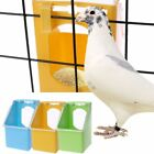 Pigeon Feeder Water Feeding Plastic Food Dispenser Parrot Container Supplies X 1