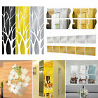 Diy Removable Home Mirror Wall Stickers Decal Art Vinyl Room Decor Feather Fun